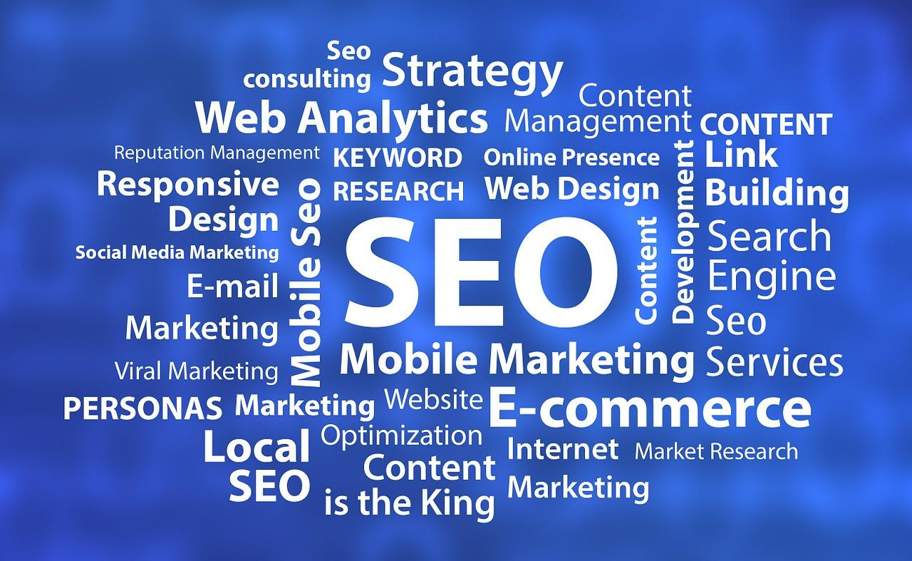 especialistas en SEO y motores de búsqueda